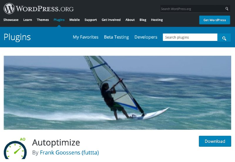 autoptomize wordpress plugin