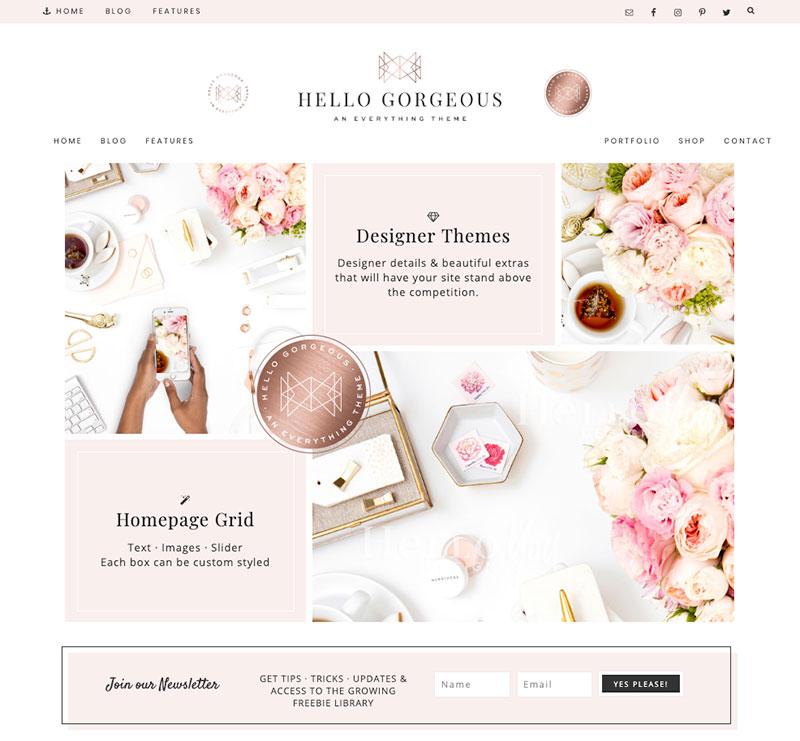 hello gorgeous wordpress theme