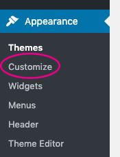 wordpress customize settings