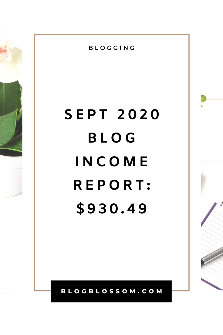 In my September 2020 income report, I'll show you how I earned $930.49 from my small blog. | blogging traffic | skyrocket your traffic | blog income report | blog traffic report | affiliate marketing | earn money online | make money online | money making tips | make money blogging | tailwind | pinterest tips | social media marketing | ad revenue | blogging tools | blogging tips | blog tips | start a blog | work from home | side hustles